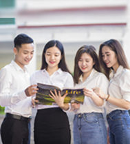 Major in Vietnamese Language